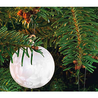 Lauscha Ice Crystal Globe | Home Accessories