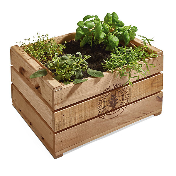 Planter made of wine barrel staves