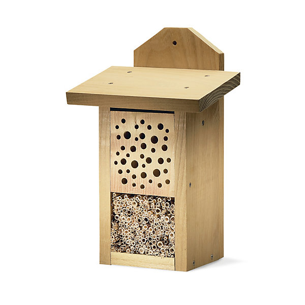 Robinia Wild Bee House