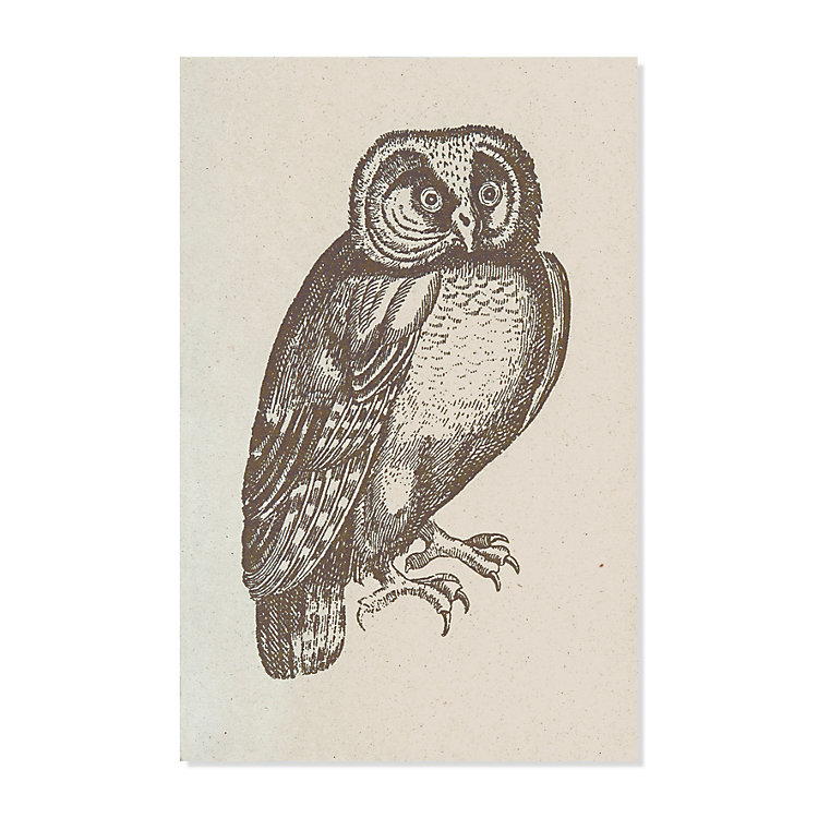 10 Greeting Cards with Animal Motifs Owl