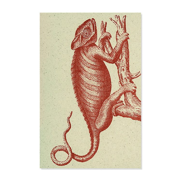 10 Greeting Cards with Animal Motifs, Chameleon