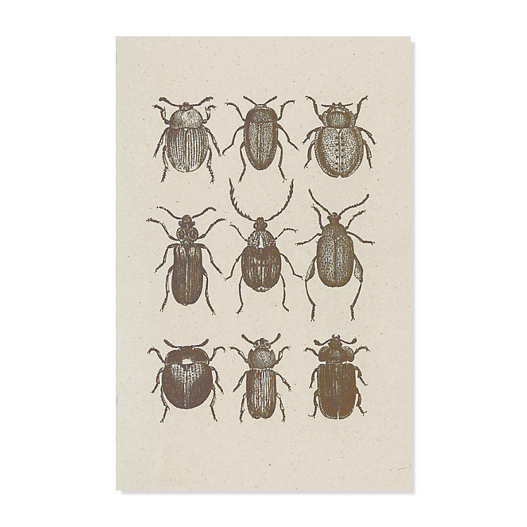 10 Greeting Cards with Animal Motifs Insects