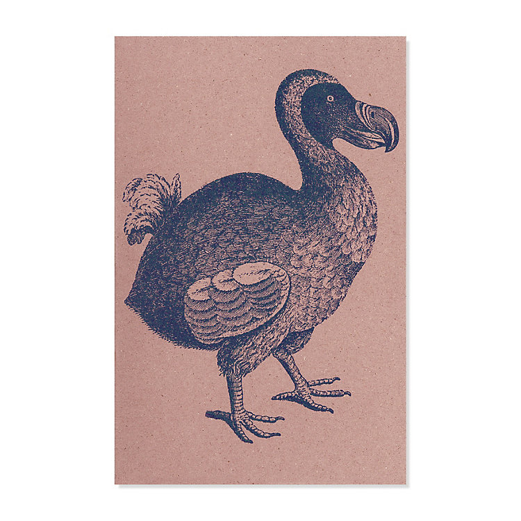10 Greeting Cards with Animal Motifs Dodo