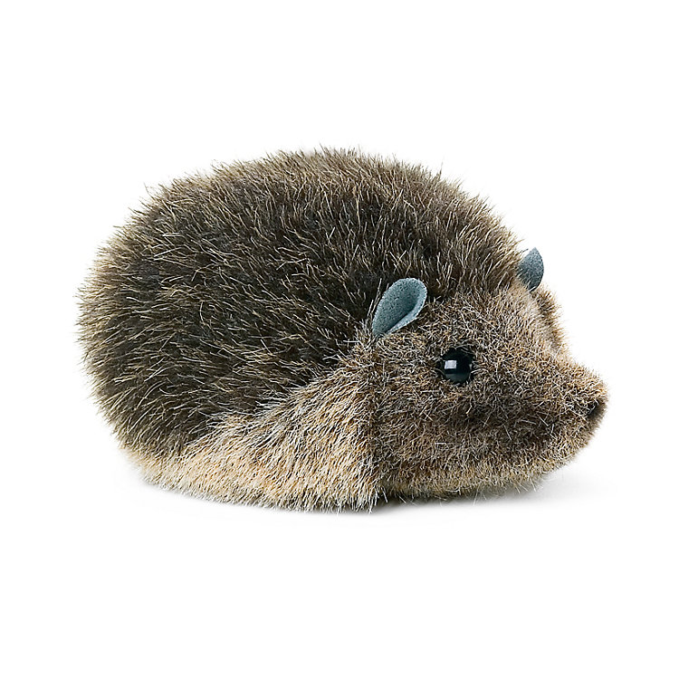 Little Kösen Hedgehog
