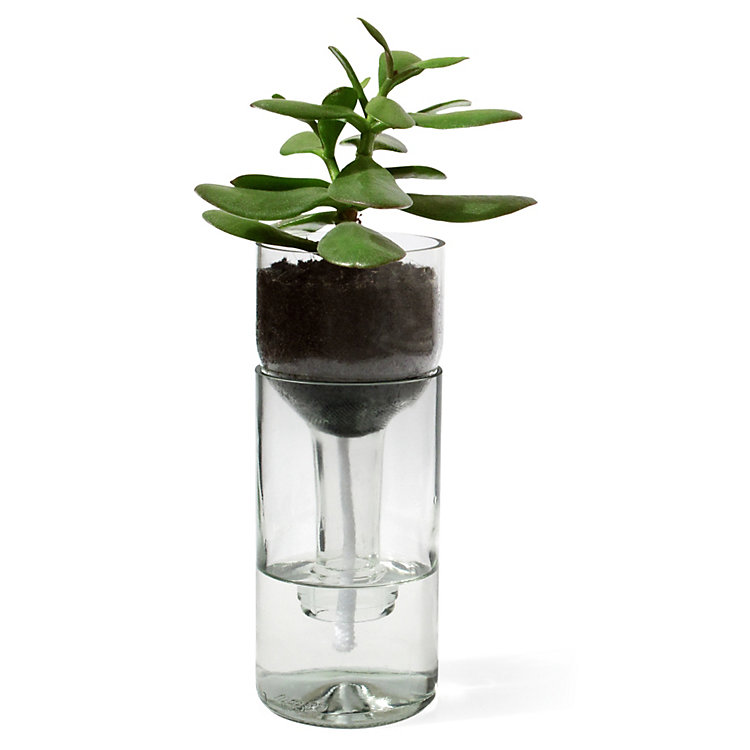 Pflanzgefäß Self Watering Bottle Klar