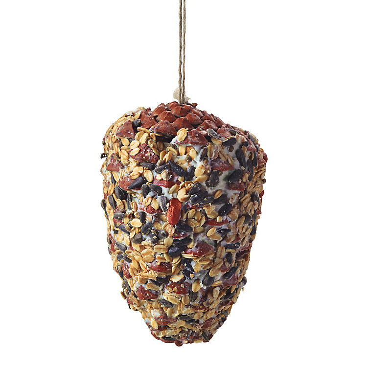 Pine Cone with Birdfeed