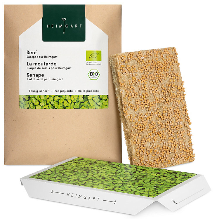 Seed Pad for the Microgreens Sprouts Kit, Mustard
