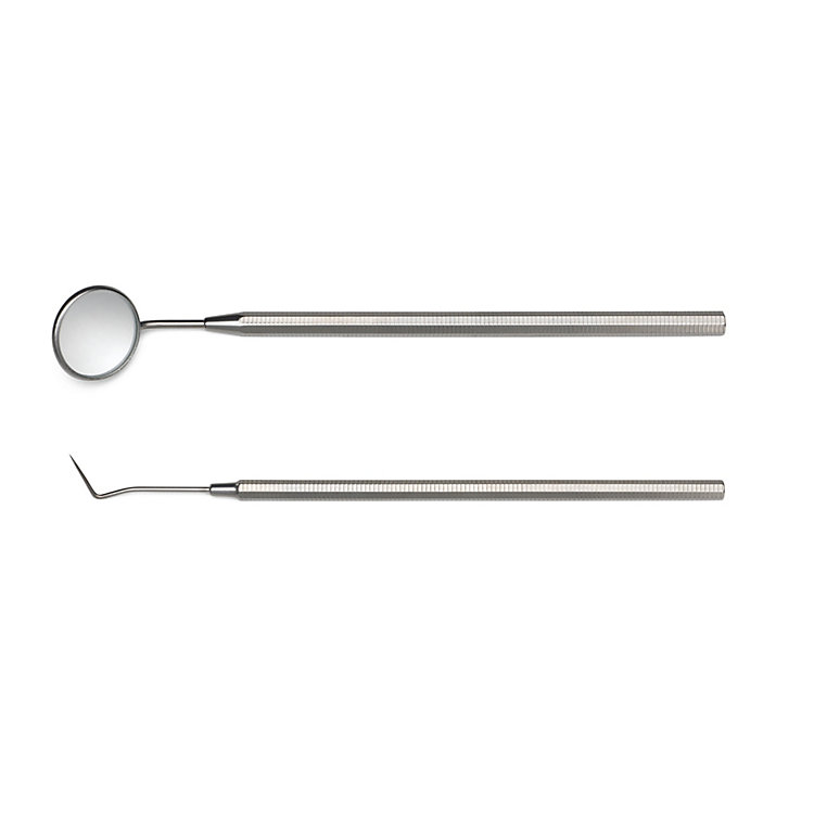 Set of Stainless Steel Dental Care Instruments