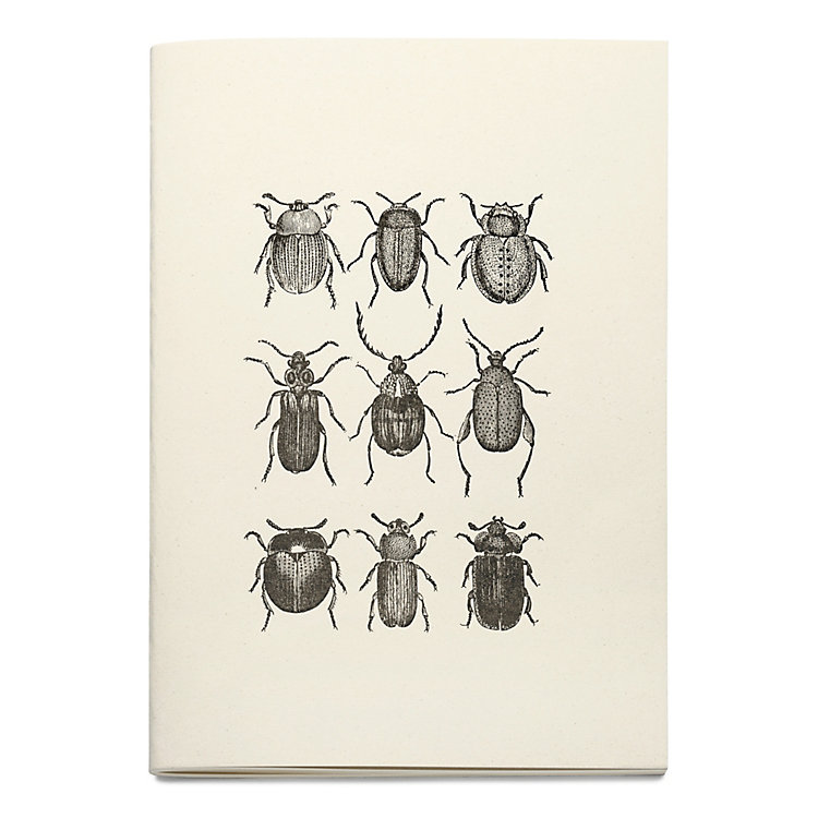 Sketchbook with Animal Motif Insects
